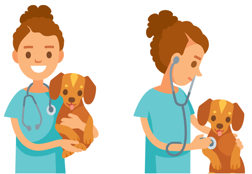 Digicare commited to veterinarian medicine